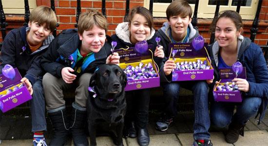 The purple fabric crocuses raise money for polio eradication.
