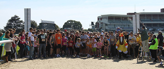 The start of the Caulfield Racecourse Run. Photo courtesy of Glen Eira Rotary Club