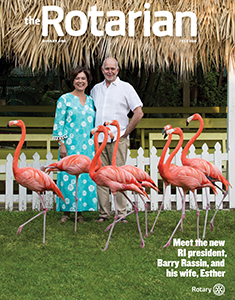 How will you respond to the flamingo challenge?